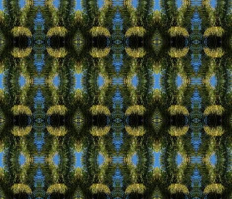 palm  tree 1 fabric by shaunaroberts on Spoonflower - custom fabric