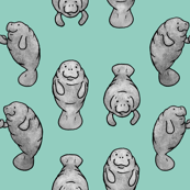 Manatees Holding Hands