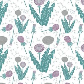 dandelions-on_white