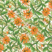 Rdaisy_vine_with_leaves_4_shop_thumb