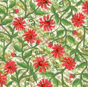 Rdaisy_vine_with_leaves_5_shop_thumb