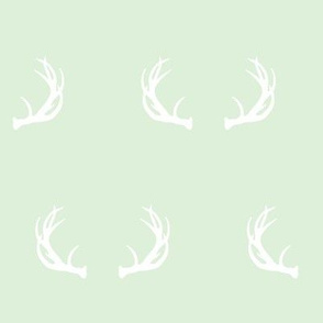 antlers // cucumber