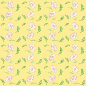 summer-daisies-yellow