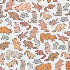 Rodents / Gnawers | Grey | Small Scale