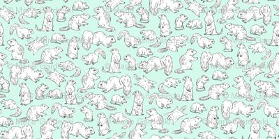 Rodents / Gnawers | White on Aqua/Mint