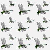 Rrrcoloureddragonflies_12_12cm_2_shop_thumb
