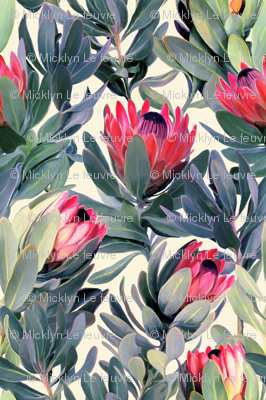 Painted Protea Floral Extra Large Version
