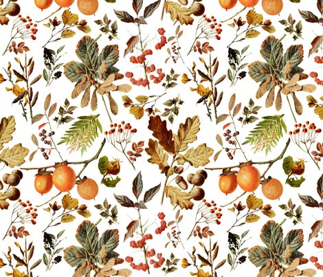 Rvintage_botanical_autumn_shop_preview