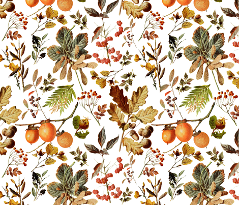 vintage botanical autumn fabric by redbriarstudio on Spoonflower - custom fabric