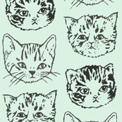Cute Cats | Mint/Aqua | Larger Scale