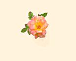 Rrrrbig_rio_rose_ed_thumb