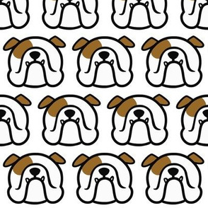 English Bulldog in white & brown - Bully love pattern