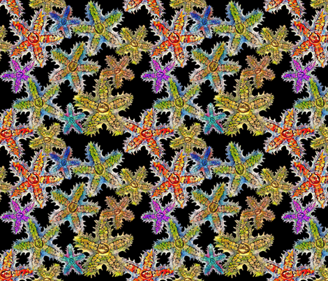 seastar2_black fabric by bbusbyarts on Spoonflower - custom fabric
