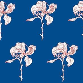 ocean_bloom_2