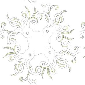 J.octopus