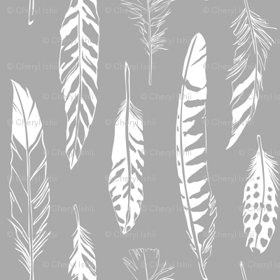 Feathers_Gray