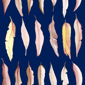 gumtree_eucalyptus_leaves