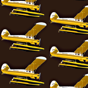 Vintage sea-plane-bigger