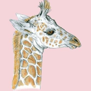 Baby Giraffe half drop on scanned pink