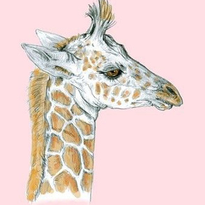 Baby Giraffe half drop on lighter Pink