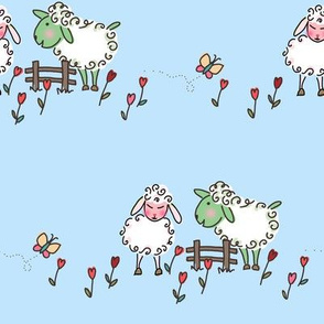 Courting sheep