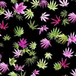 420 Spring Leaf