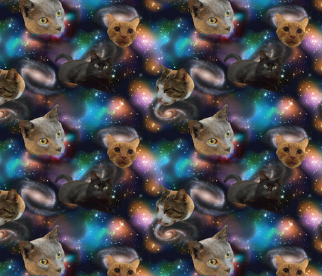 Galaxy cats fabric electrogiraffe spoonflower for Galaxy material fabric