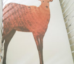 Brown Watercolor Stag Deer
