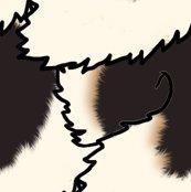 Rblack_and_tan_tail_shop_thumb