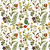 vintage botanical wildflowers-small