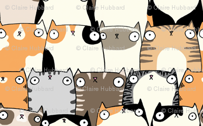 Staring Cats