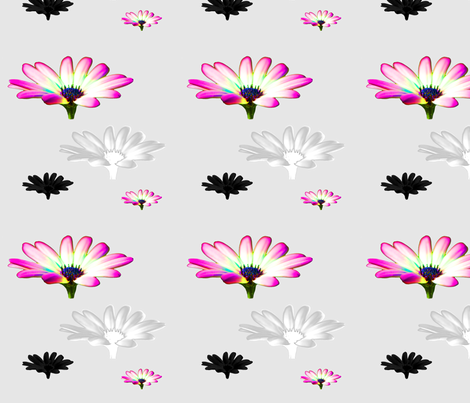 english_garden_happy cosmos_pink fabric by jamac on Spoonflower - custom fabric