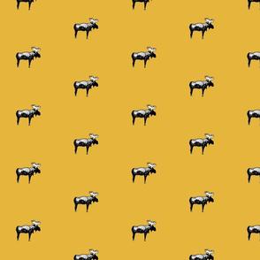 moose__real_mustard
