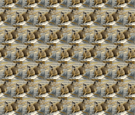 meerkats 2 fabric by shaunaroberts on Spoonflower - custom fabric