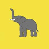 Elephants like Mustard