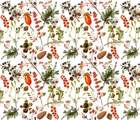 vintage botanical winter -tiny wallpaper - redbriarstudio - Spoonflower