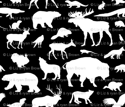 North American Animals on Black