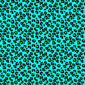 Leopard Spots Aqua