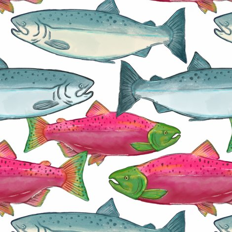 Rspawning_salmon_in_color_shop_preview