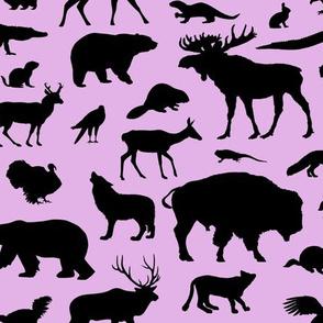 North American Animals on Pink