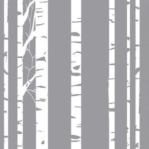 Aspen on gray