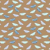 serene blue butterflies