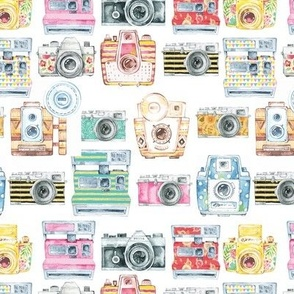 Watercolor Cameras - Large Scale