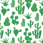 Cactus lush green summer garden and succulent cacti plants for summer cool scandinavian style gender neutral green