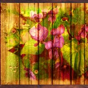 Rviolets_on_wood_yummi_pink_green_fat_lc_20_10_shop_thumb