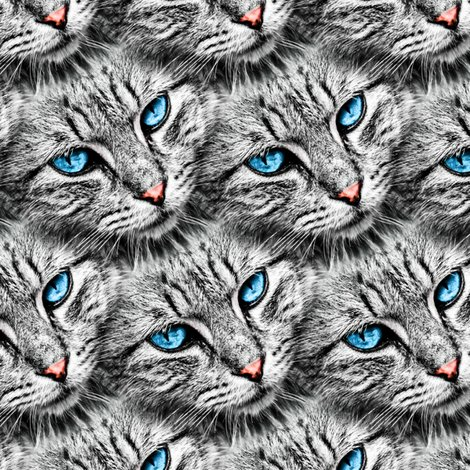 Rcat_eyes_pattern2-01_shop_preview