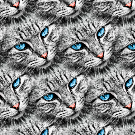 cat eyes blue fabric by versodile on Spoonflower - custom fabric