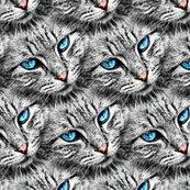 Rcat_eyes_pattern2-01_shop_thumb