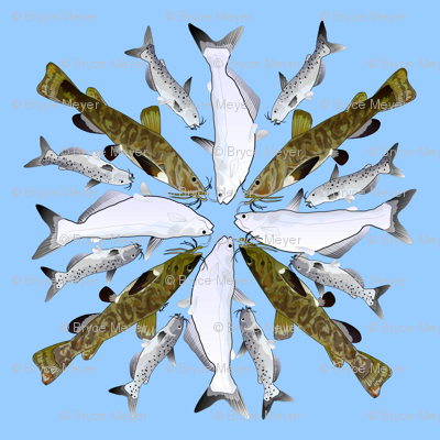 Three Catfish 4x4x8 pattern