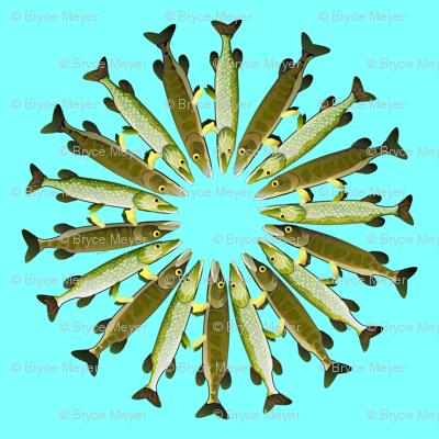 Pike Daisy Ring pattern